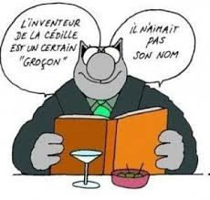 LE CHAT ORTHOGRAPHE